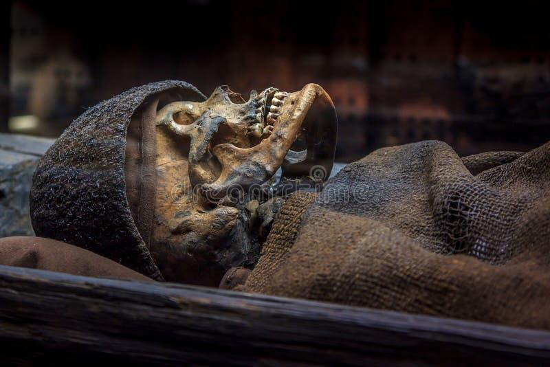 Squelette d'un homme d'âge du bronze dans un monticule d'enterrement images libres de droits