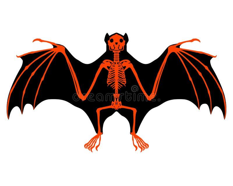 Squelette de batte illustration libre de droits