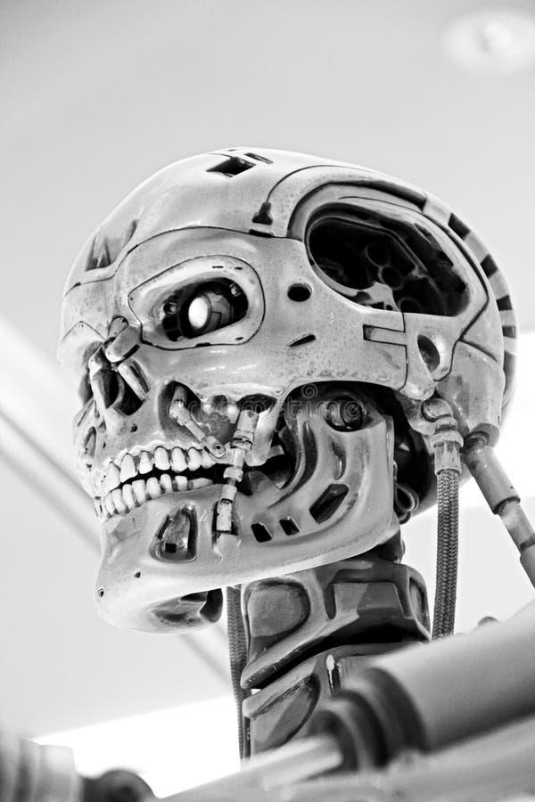 Squelette de l'extrémité T-800 image libre de droits