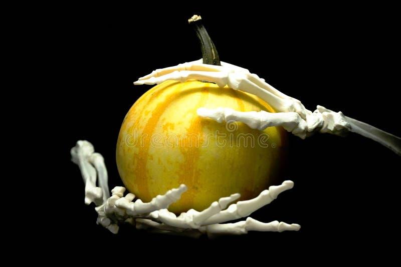 Squelette et pumpking photographie stock
