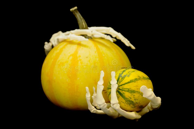 Squelette et pumpking images stock