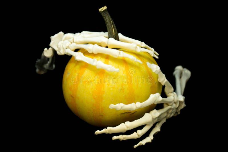 Squelette et pumpking photo stock
