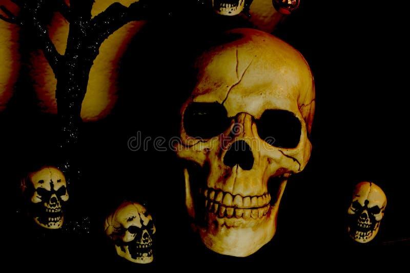 Squelettes de Halloween photo libre de droits