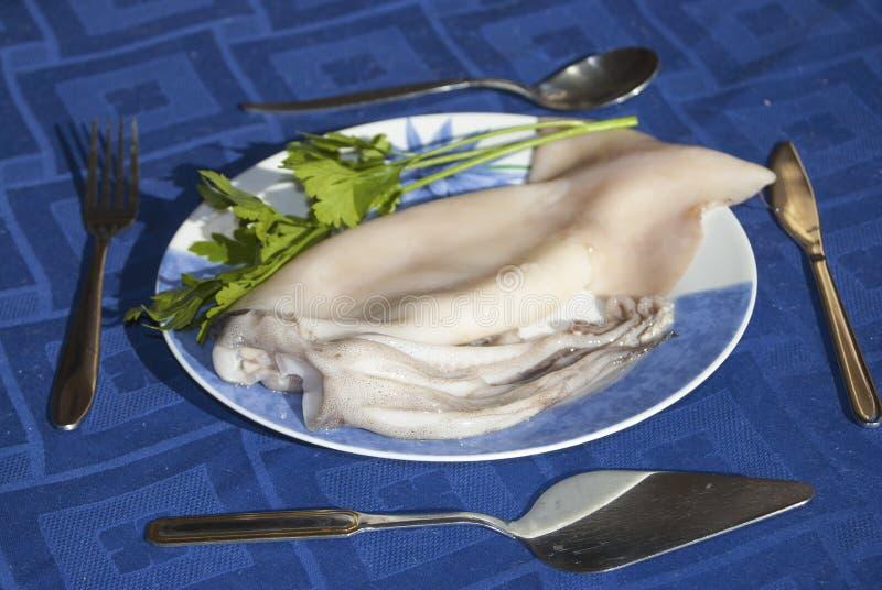 Download Squid stock image. Image of crude, fish, taste, blue - 27214087
