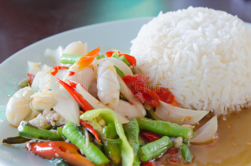 Squid fried with chili pepper. Close up squid fried with chili pepper and mix vegetable served with steamed rice on dish stock image