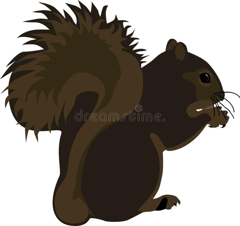 Download Squirrel stock vector. Image of life, childish, cartoon - 1998700