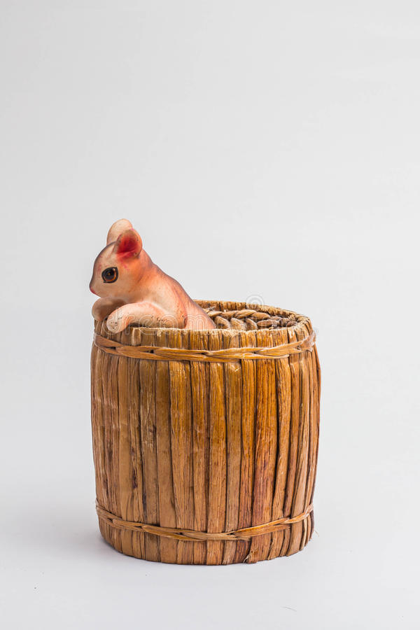 Squirrel in a Box Tissue. Squirrel in a Box Tissue made from water hyacinth stock image