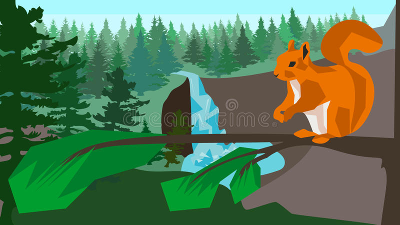 Squirrel on a branch in the coniferous forest vector illustration