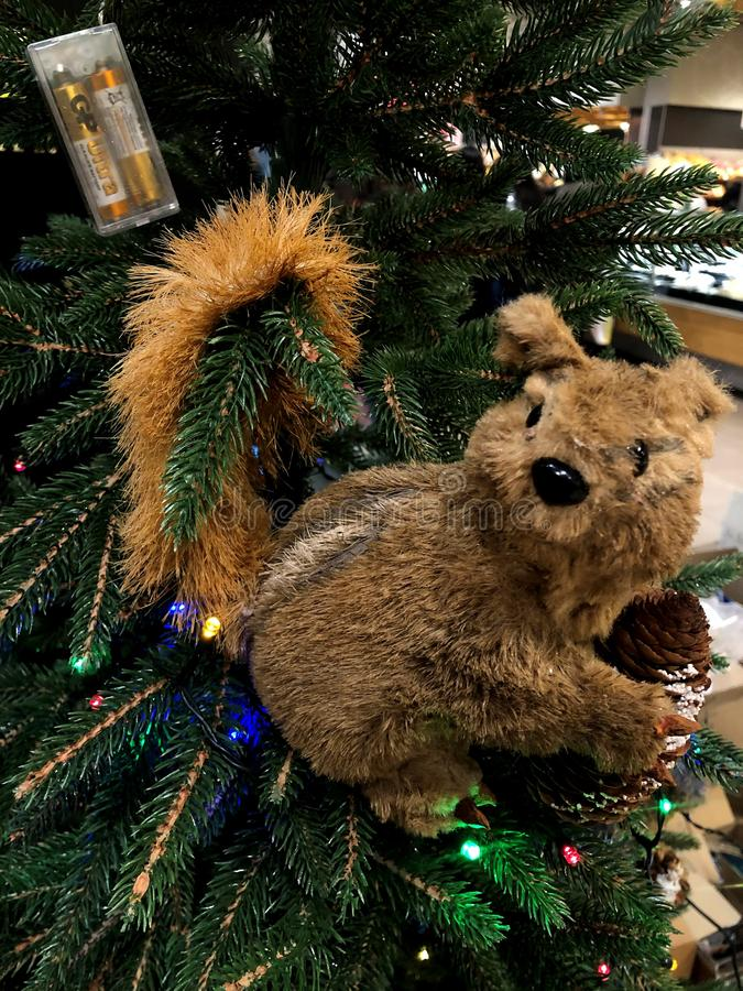 Squirrel on christmas tree. The photo depicts a fragment of a New Year tree. royalty free stock photography