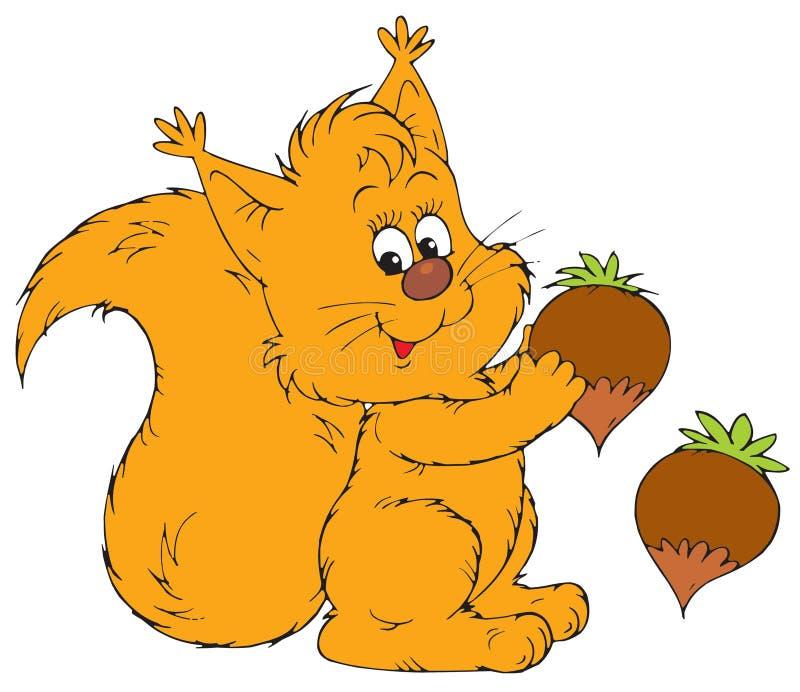 Squirrel (clip-arte di vettore) illustrazione di stock