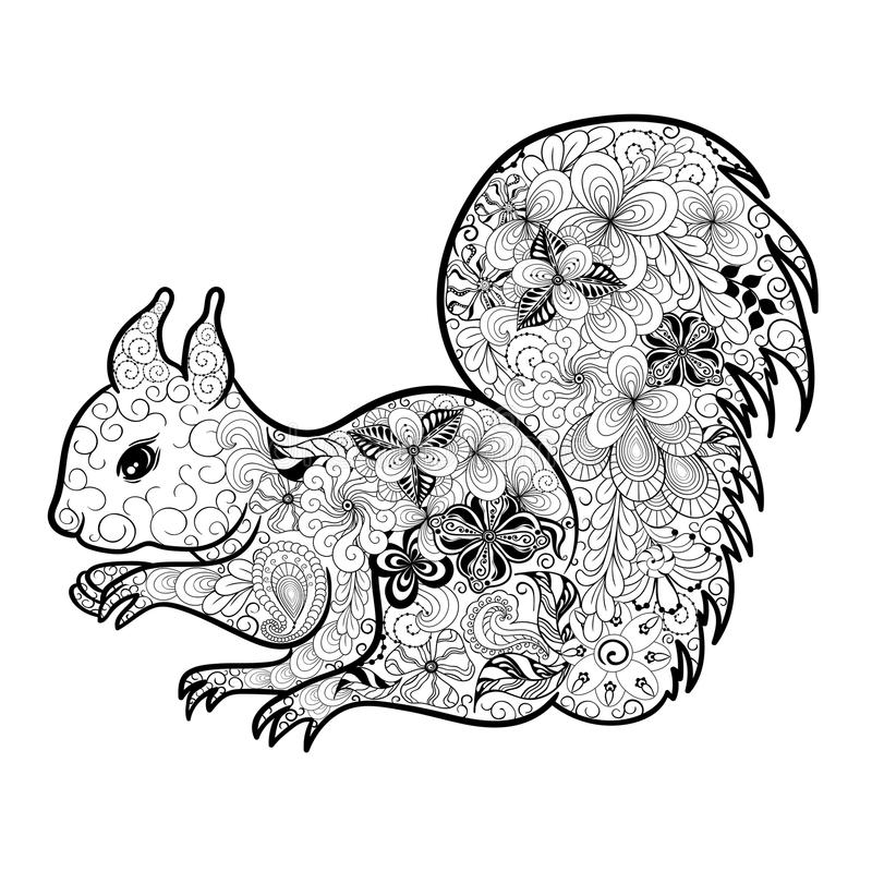squirrel doodle stock vector illustration of decoration