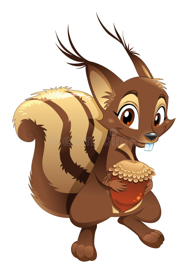 Squirrel, funny cartoon character vector illustration
