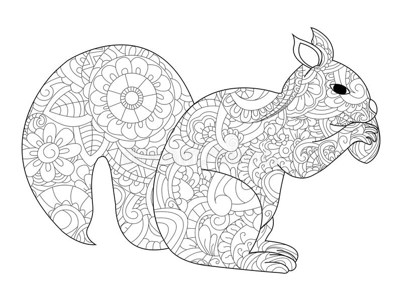 Download Squirrel With Nut Coloring Vector For Adults Stock