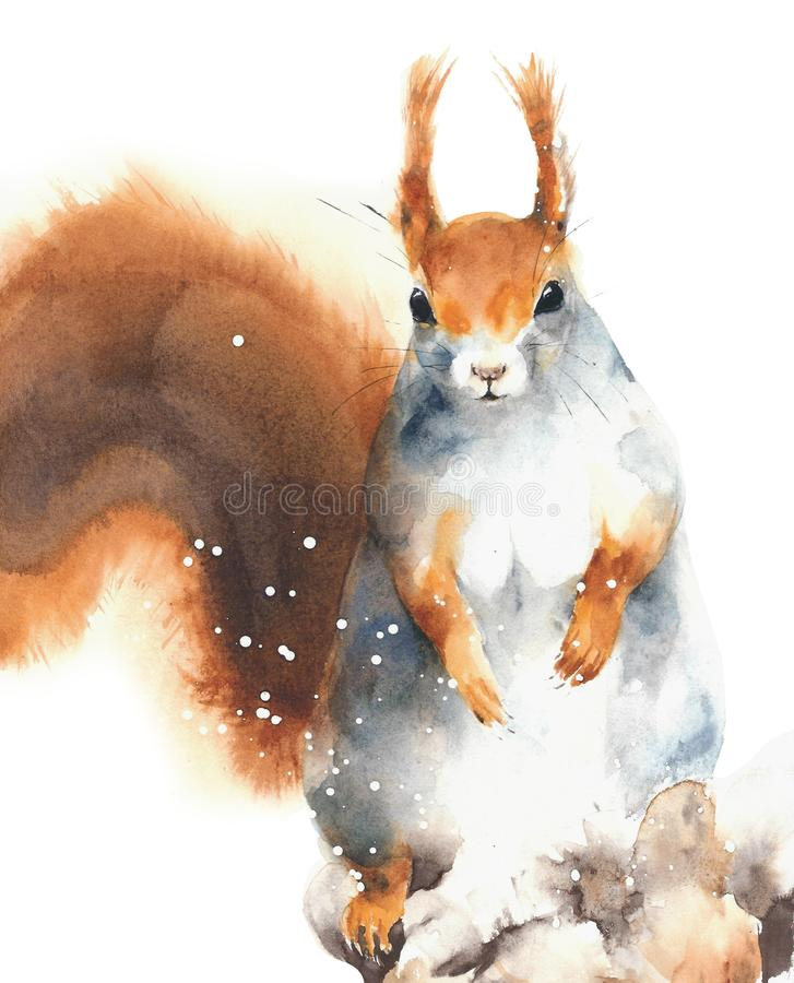 Squirrel red squirrel rodent cute animal in winter snowing greeting card Christmas watercolor painting illustration isolated on wh stock illustration