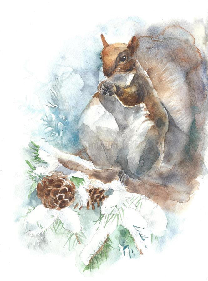 Squirrel watercolor painting illustration isolated on white background greeting card stock illustration