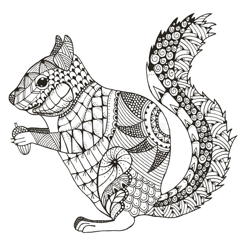 Download Squirrel Zentangle Stylized Vector Illustration Pattern Free Stock