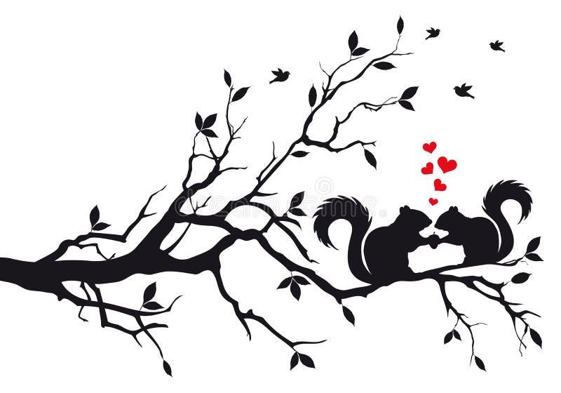 Squirrels on tree branch vector illustration