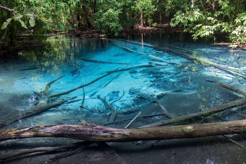 Sra Morakot Blue Pool på det Krabi landskapet arkivfoto