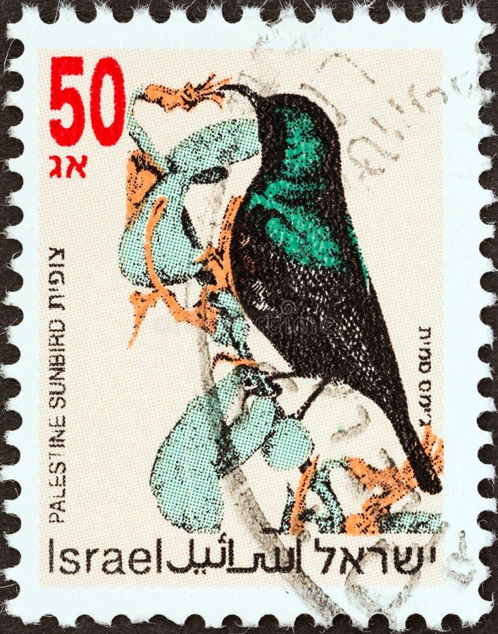 SRAEL - CIRCA 1992: En stämpel som tryckts i Israel från 'Songbird'-frågan visar solfågel från Palestina, omkring 1992 arkivfoto