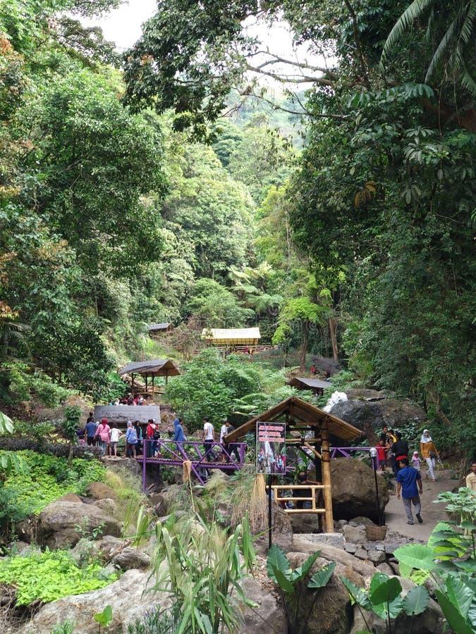 Srambang las, Halny miejsce przeznaczenia fotografia royalty free