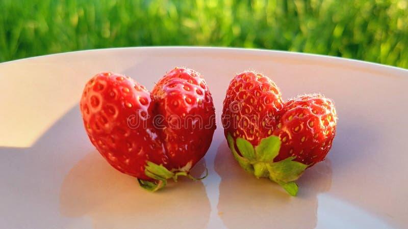 Srawberries som hjärtor royaltyfria bilder