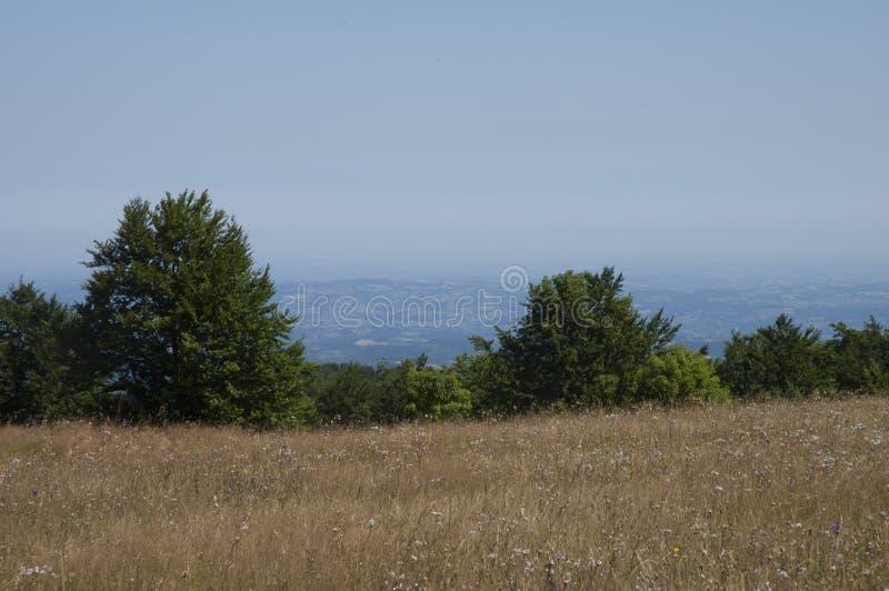 Srbiji-montanha Povlen de Planina Povlen u em serbia fotografia de stock royalty free