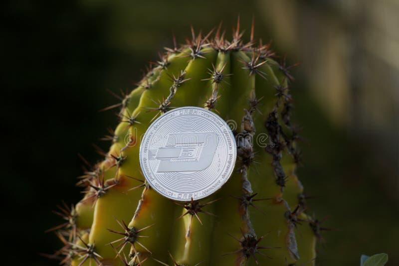 Srebna junakowanie moneta obrazy royalty free