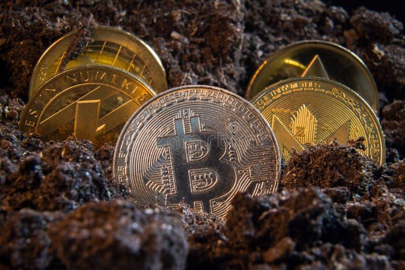 Srebnego bitcoin waluty crypto moneta w brud ziemi z inny w plecy: Litecoin, czochra, Monerd, Ethereum moneta cyfrowy fotografia royalty free