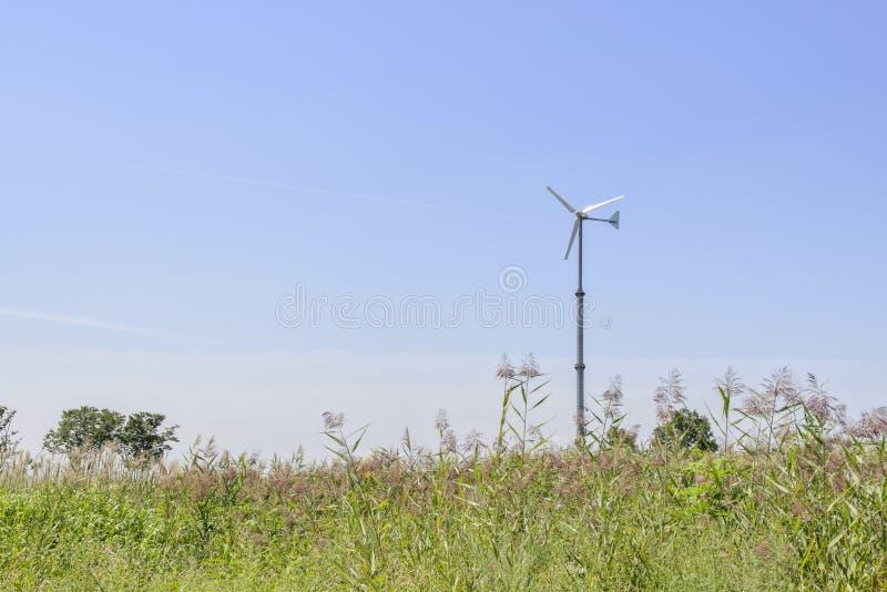 Srebnej trawy pole z siła wiatru generatorem obrazy stock