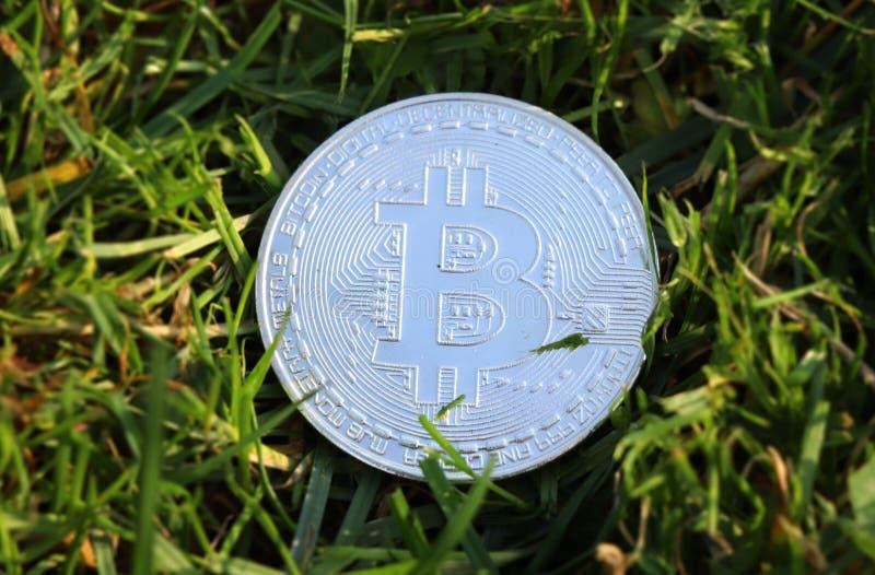 Srebny bitcoin po środku trawy Nowa era waluta jest tutaj Chwila obecna jest bitcoin sławnym zespołem fotografia stock