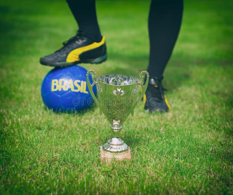 Srebny piłki nożnej trofeum obrazy royalty free