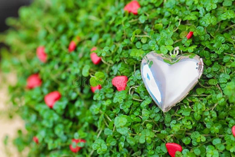 Srebny serce na zielonej trawie obraz stock
