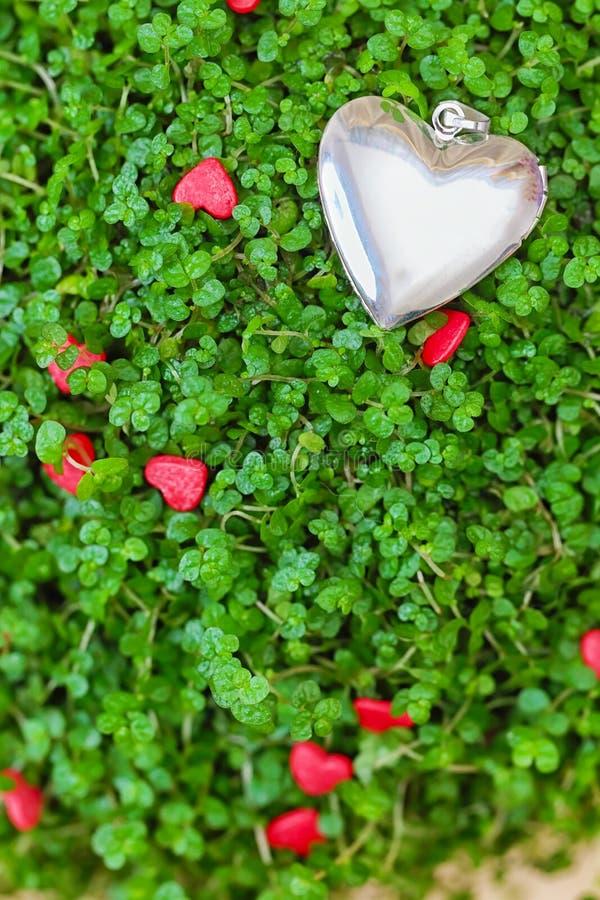 Srebny serce na zielonej trawie zdjęcie royalty free