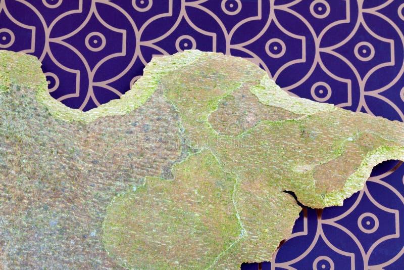 Srebrzysta drzewna barkentyna i wzorzystość papier błękitny i złoto fotografia stock