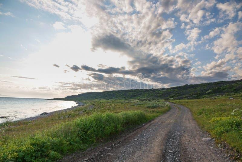 SREDNIY półwysep, MURMANSK region, algi rzucać surfuje, brzeg Arktyczny ocean, Sredniy półwysep fotografia stock