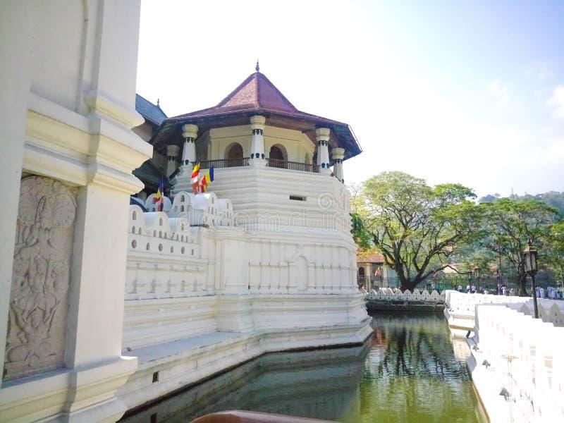 Sri Dalada Maligawa royaltyfri fotografi