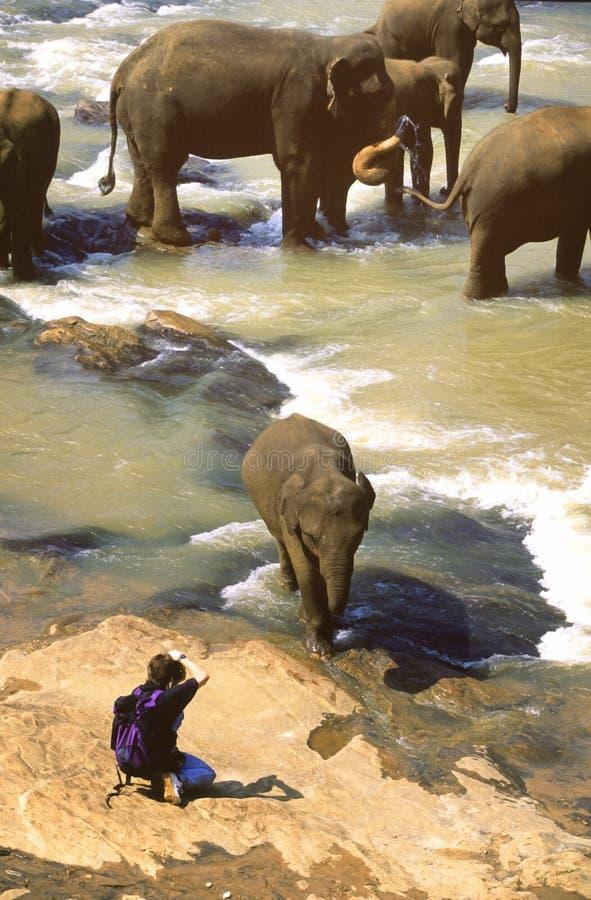 Sri Lanka imagenes de archivo