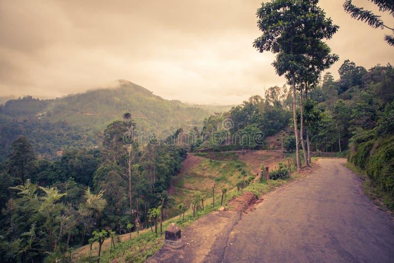 Sri Lanka-aard royalty-vrije stock fotografie