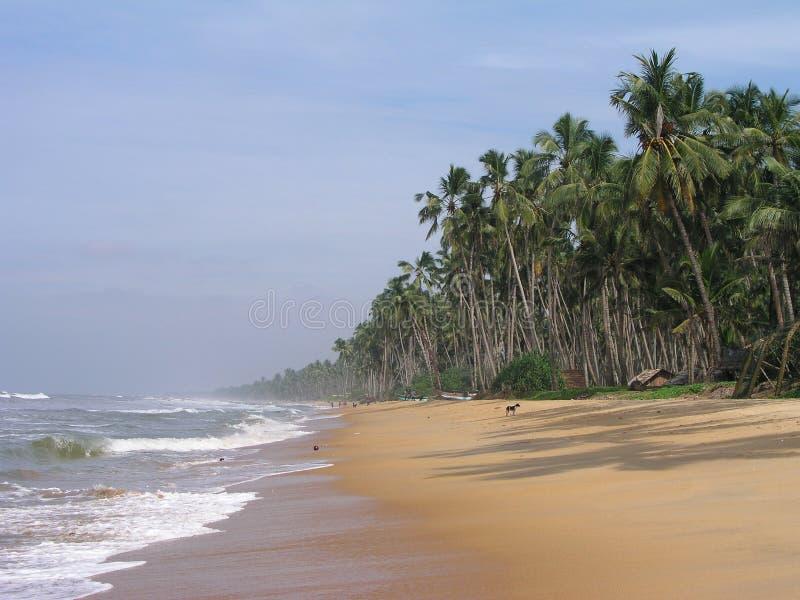 Sri Lanka, Ceylon, kust van de Indische Oceaan. royalty-vrije stock foto