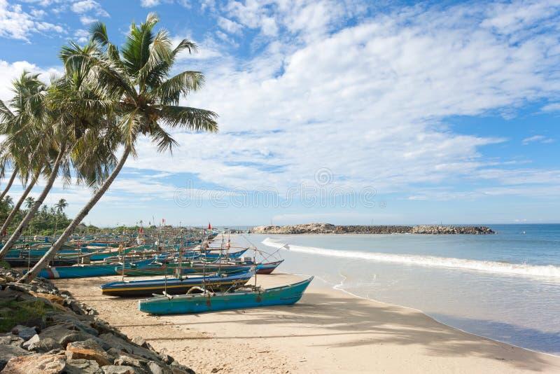 Sri Lanka, Dodanduwa - palmeras en la costa costa de Dodanduwa imagen de archivo