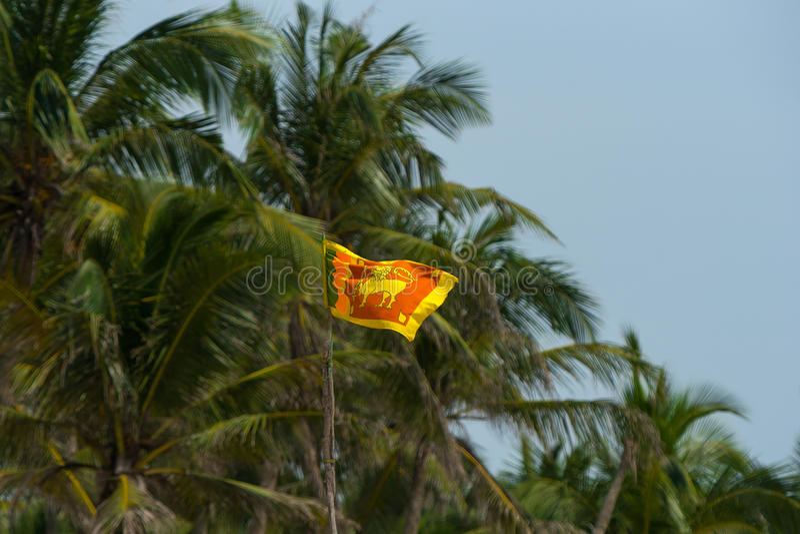 Sri Lanka flag on blue sky and palm. Old name Ceylon.  royalty free stock photography