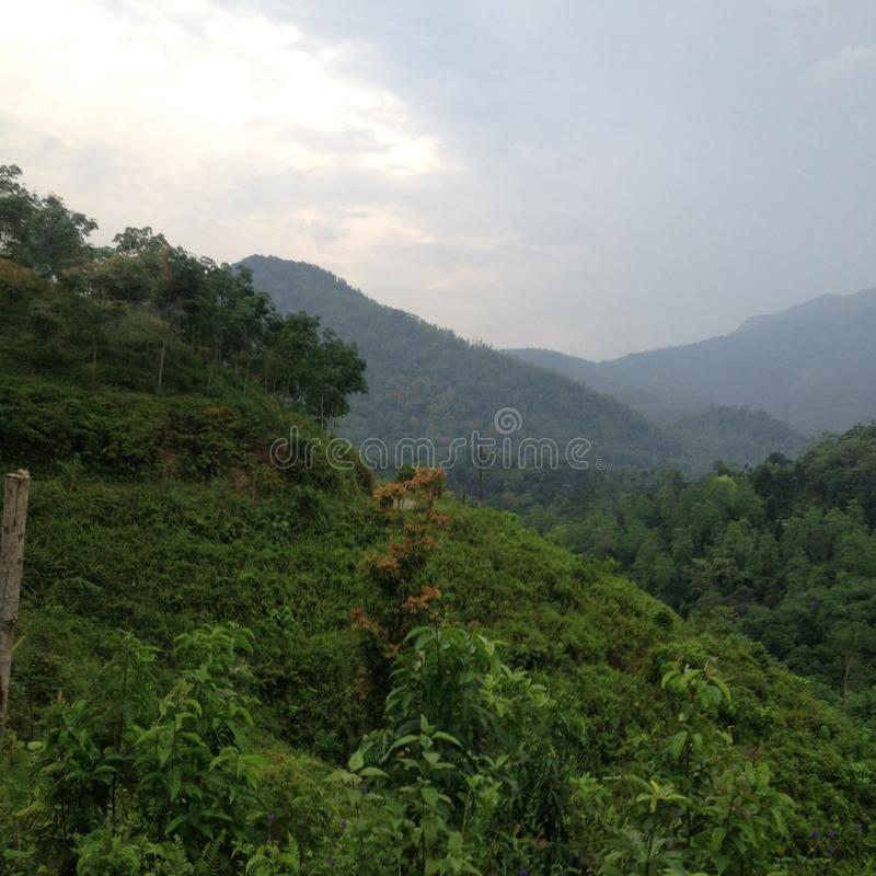 Sri Lanka kulle med en sikt arkivfoto