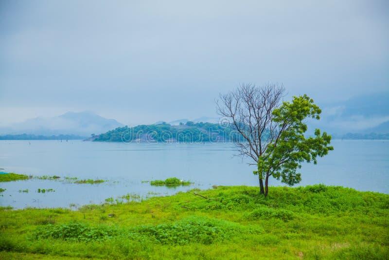 Sri Lanka natur royaltyfria foton