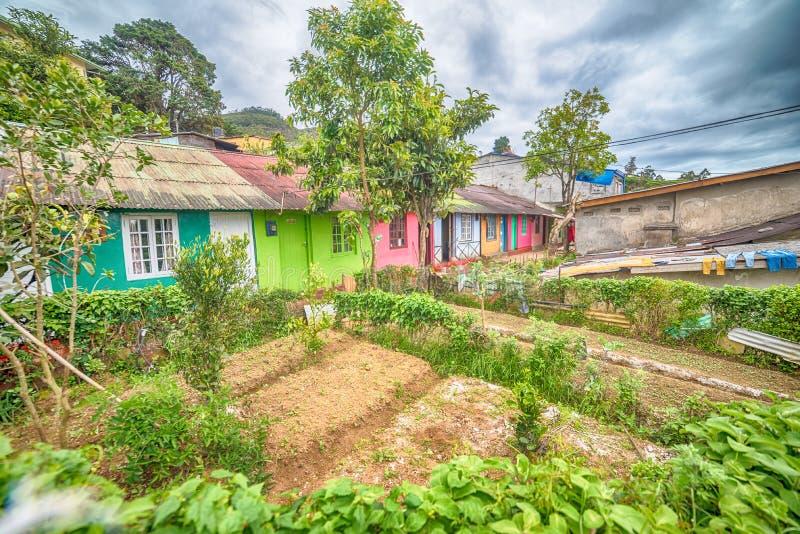 Sri Lanka, Nuwara Eliya : maisons des agriculteurs dans des plantations de thé image stock