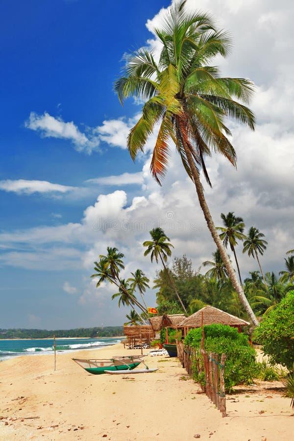 Sri lanka' plaża obrazy stock