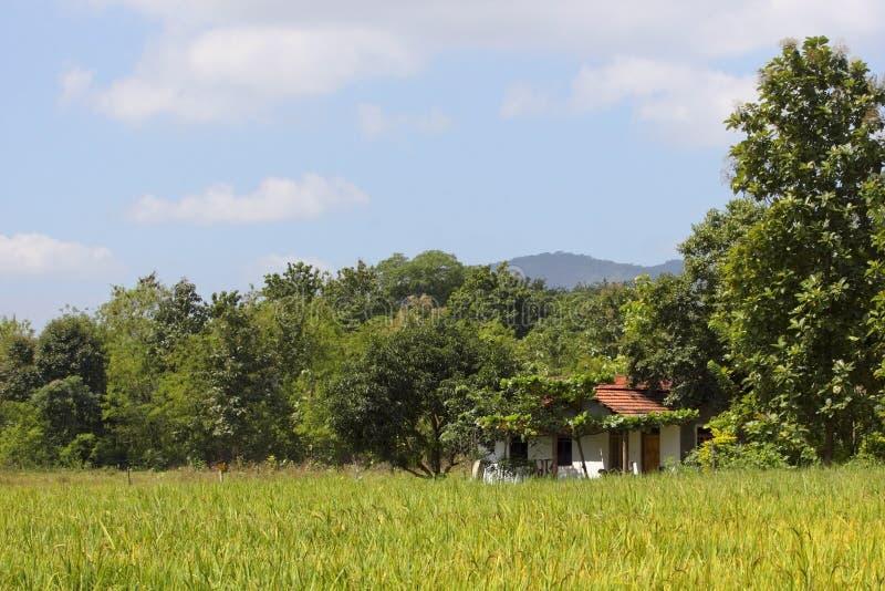 Sri Lanka rural imagen de archivo libre de regalías