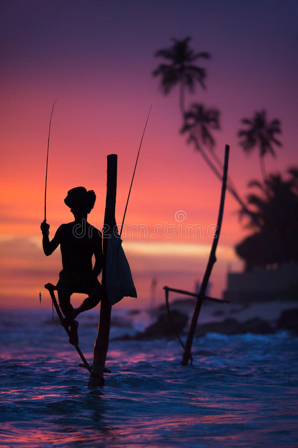 Sri Lanka`s Stilt Fisherman. Fishing on stilt is very common in many Asian countries, but most of all - in Sri Lanka, in the Ahangama village stock images