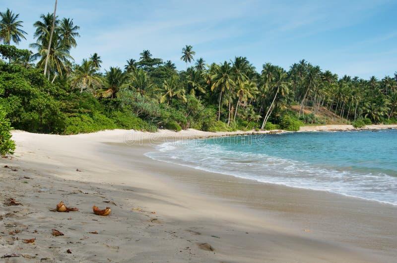 Sri Lanka-strand 7 stock afbeeldingen