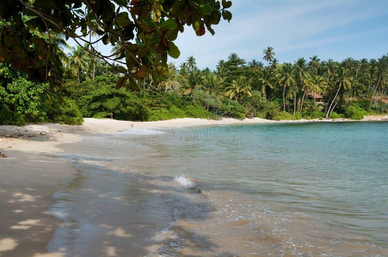 Sri Lanka-strand 8 royalty-vrije stock foto