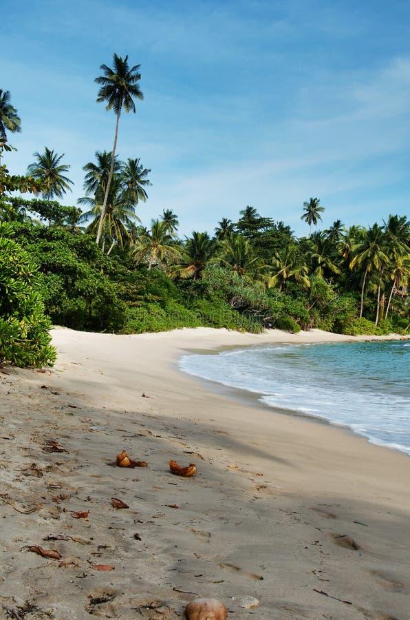 Sri Lanka-strand 9 stock afbeelding